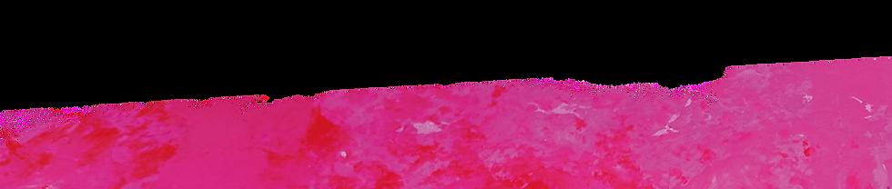rose%2520copie2_edited_edited.png