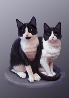 kittens.png