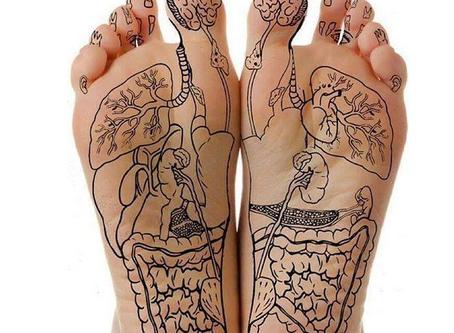 Les points réflexes  Réflexologie - La santé par les pieds