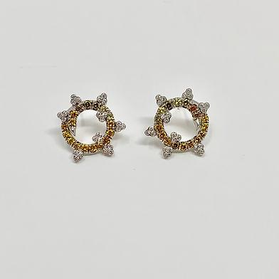 Dream Earrings1.jpg