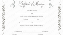 Michigan Marriage License
