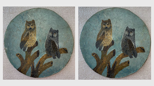 Owl Before and After better.jpg