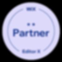 Pioneer - Wix Partner.png