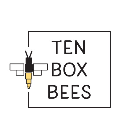 Ten Box Bees Logo designed by Logodentity