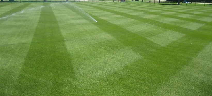 Hydroseeding Lawn Care.jpg