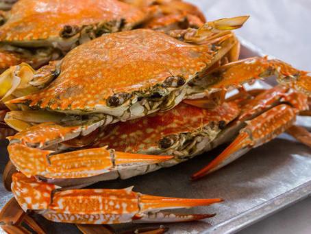 Crab Feast at the Street Fair