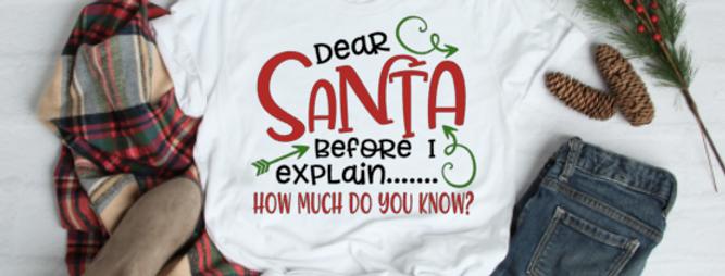 Dear Santa Before I Explain - Child