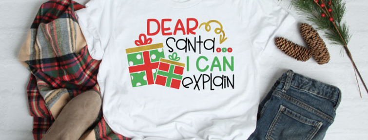 Dear Santa, I can Explain - Child