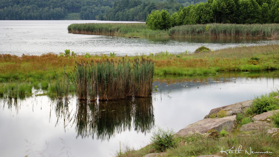 Rondout Reservoir
