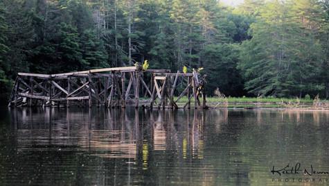 Rio bridge remains