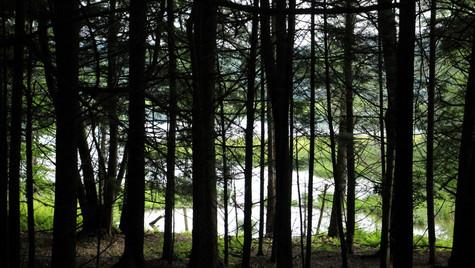 Hunter Lake