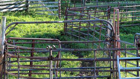 Fence Maze 2