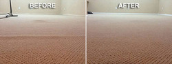 best carpet damage repair in el paso tx