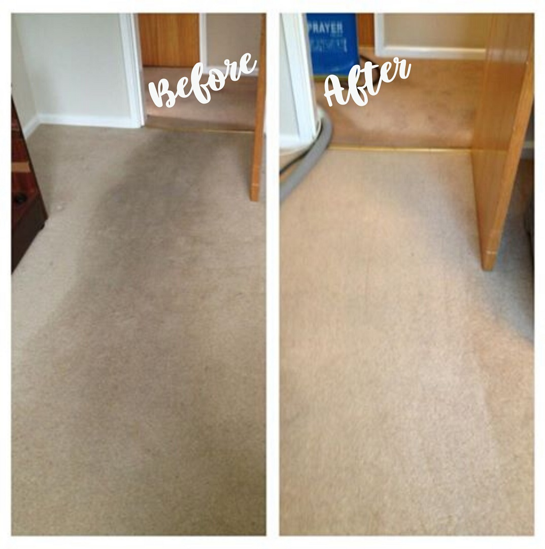 best carpet cleaner in el paso tx