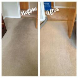 best carpet cleaner in el paso tx