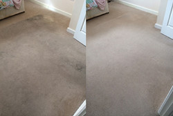 Stain removal experts El Paso
