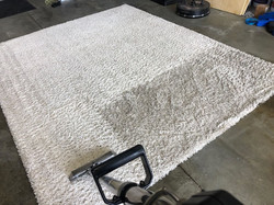 area-rug-cleaning-1