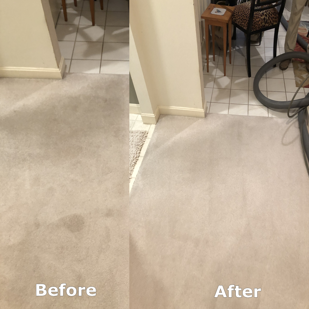 affordable carpet cleaning in el paso tx
