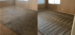 Best carpet cleaning EL PASO