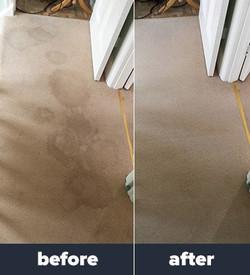pet odor/urine removal el paso tx