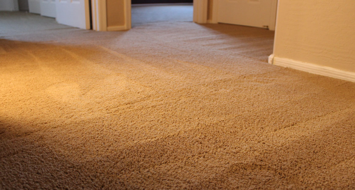 Best carpet cleaning company El Paso