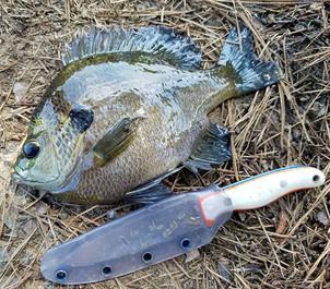 Fish Fowler