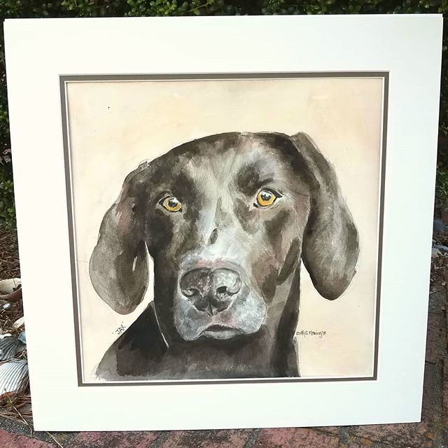 Pet Portrait Tuesday! Sweet Jax, firstbo