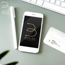 bipelec-deris-logo01.jpg