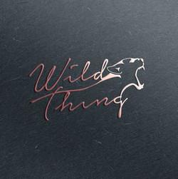 WT-logo-mockup.jpg