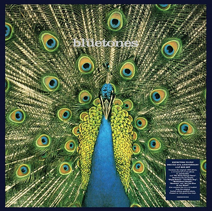 "Bluetones ""Expecting To Fly"""