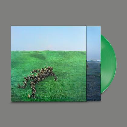 "Squid ""Bright Green Field"""