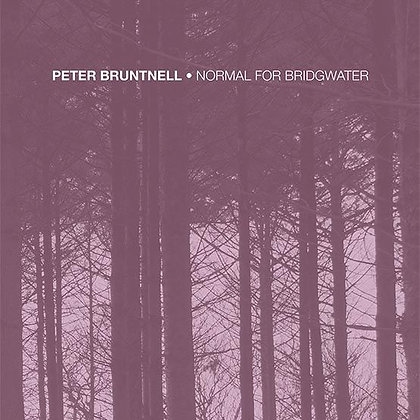 Peter Bruntnell- Normal For Bridgwater
