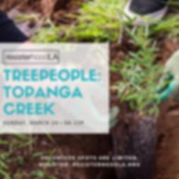 TreePeople 2019 Instagram.png