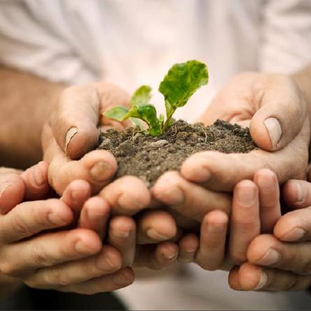 Why-You-Should-Help-a-Farmer-by-Planting
