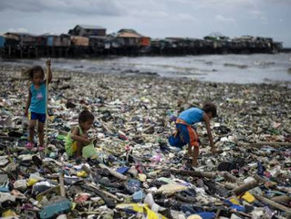 WE DON'T NEED TO BAN PLASTIC. WE JUST NEED TO START USING IT PROPERLY