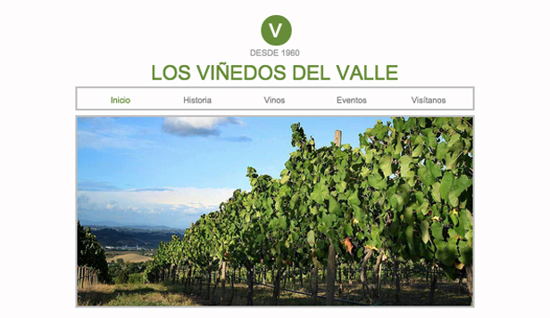 Hospedaje website templates – La vinería