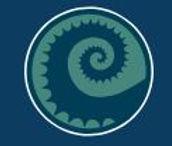 the reef logo.jpg