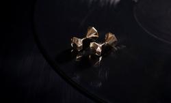 conjoined [twin diamond] earrings