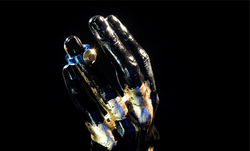 Ring [reversed]|[sapphire ring]