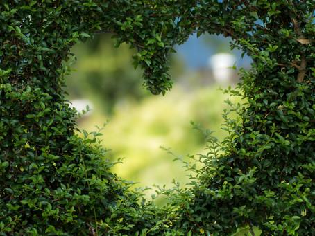 The Earth Love Affair