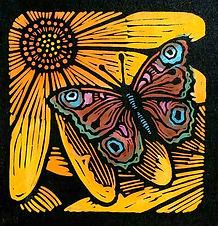 Moth on Yellow Flower.jpg