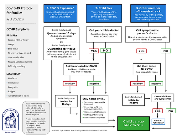 Covid Flow Chart.png