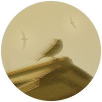 bird logo 2 circle.png