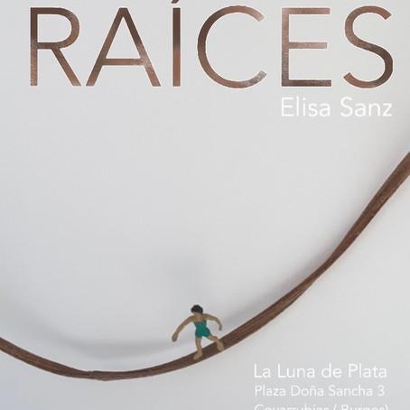 """Exposición temporal """"La luna de plata"""" Covarrubias (Burgos)"""