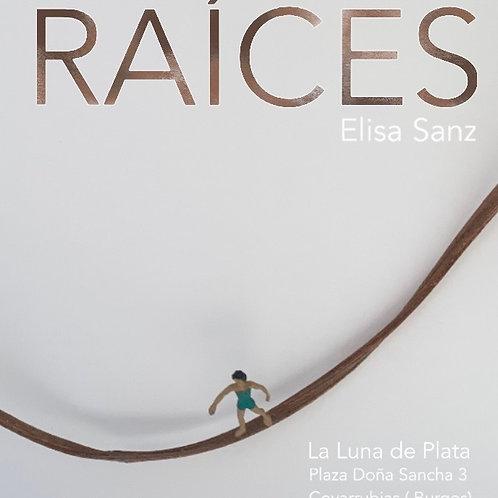Venta en exposición temporal en Covarrubias (Burgos)
