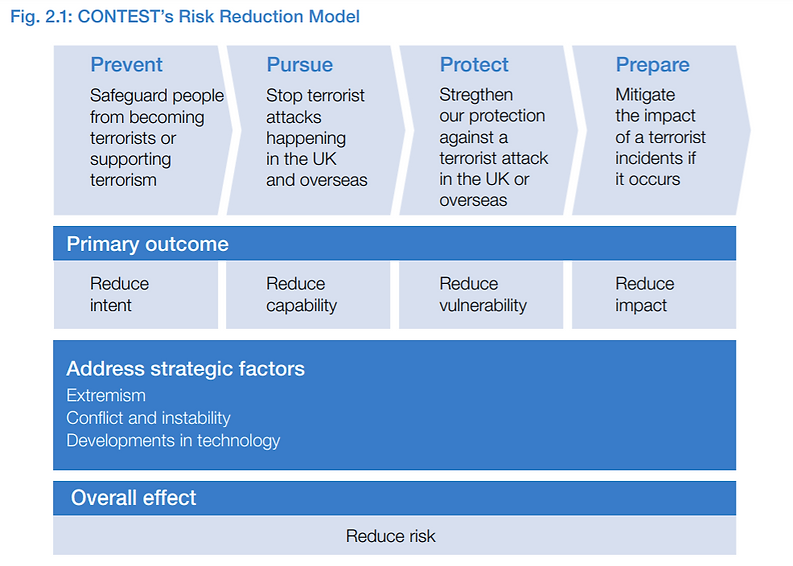Risk Reduction Model.PNG