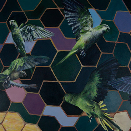 6. Parakeets