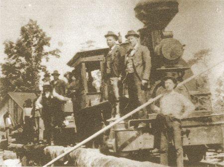 Logging Train Swift-Coles