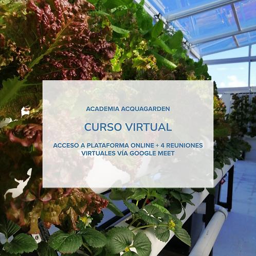 Curso virtual - MicroMaster