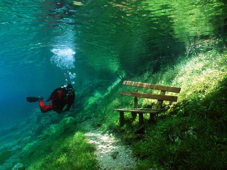 Undersea Bench